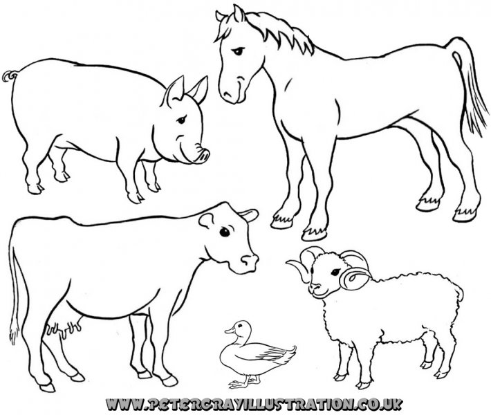 Free black and white farm animal clipart jpg royalty free download Farm Animal Clipart Black And White & Look At Clip Art Images ... jpg royalty free download