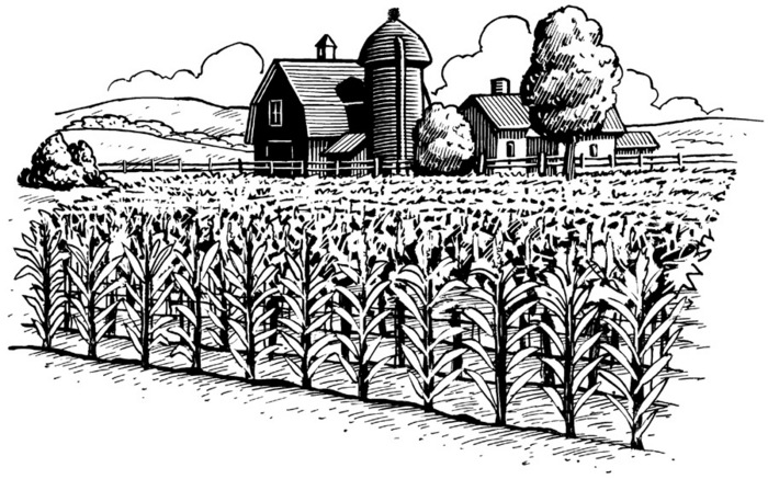 Farm scene cliparts download. Free clipart black and white play farming
