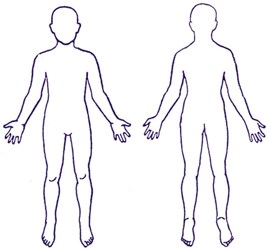 Images of human clip. Free clipart body outline