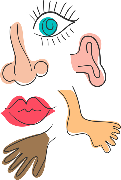 Free clipart body parts clipart royalty free library Free Body Cliparts, Download Free Clip Art, Free Clip Art on Clipart ... clipart royalty free library