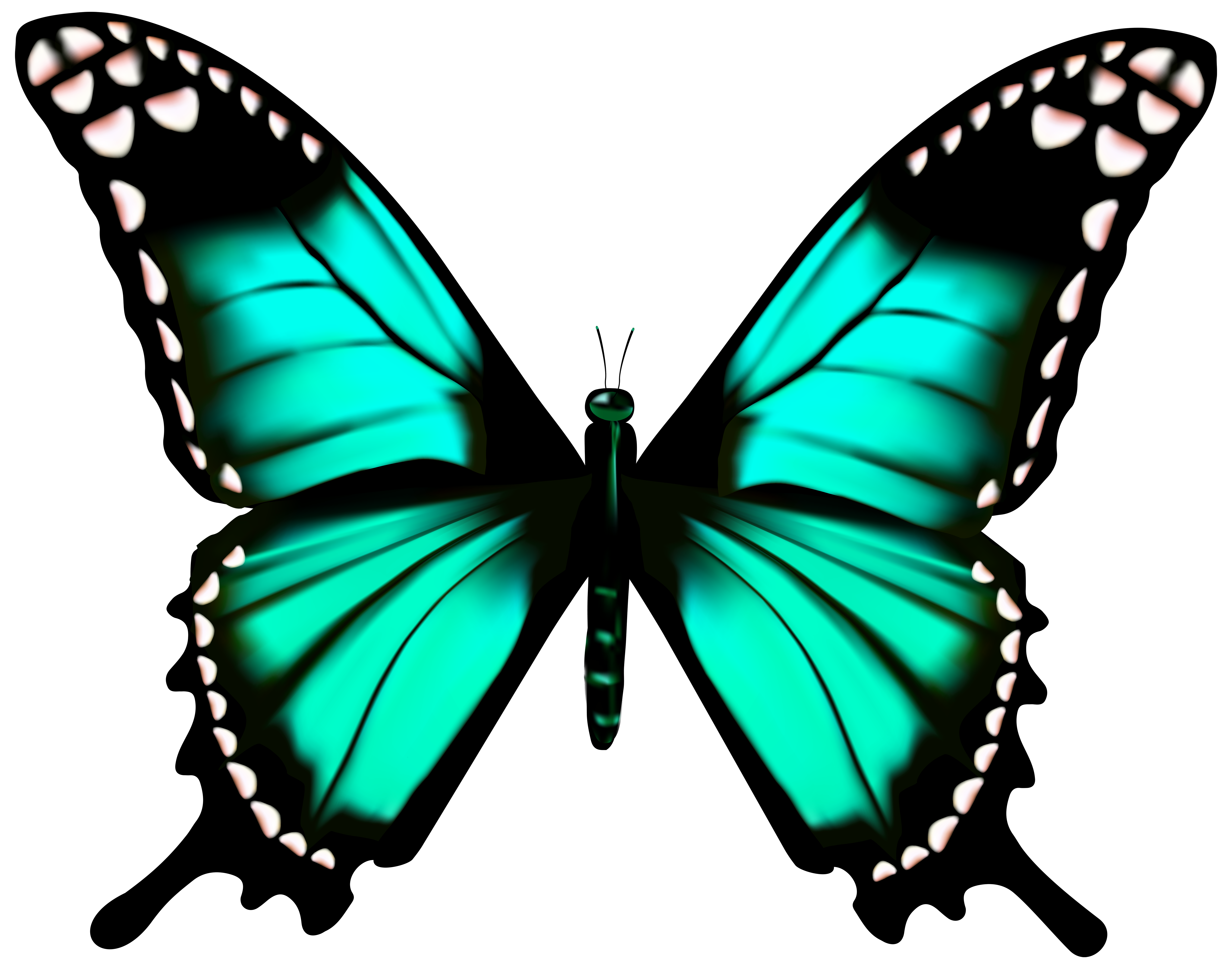 Free clipart butterfly images banner free Butterfly Transparent PNG Clip Art Image | Gallery Yopriceville ... banner free