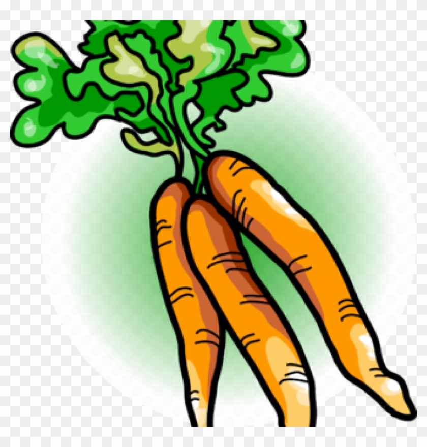 Free clipart carrots. Carrot image food vegetables