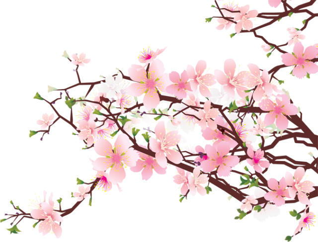 Free clipart cherry blossoms clipart free download Web Design & Development | Calendars & Templates in 2019 | Cherry ... clipart free download