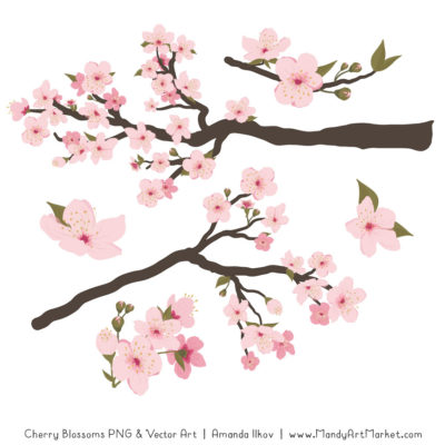 Free clipart cherry blossoms clipart royalty free library Free Cherry Blossom Clipart Vectors by Mandy - Mandy Art Market clipart royalty free library
