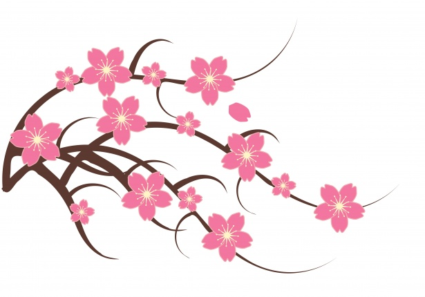 Free clipart cherry blossoms freeuse download Cherry Blossom Clipart Illustration Free Stock Photo - Public Domain ... freeuse download