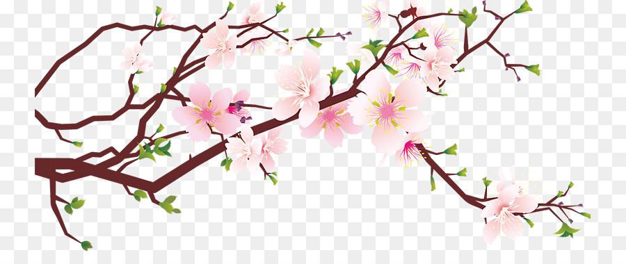 Free clipart cherry blossoms graphic library stock Cherry Blossom Tree png download - 800*362 - Free Transparent Cherry ... graphic library stock