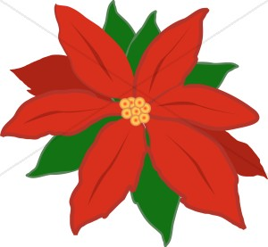 Free clipart christmas flowers banner freeuse library Christmas Flower Clipart - Clipart Kid banner freeuse library