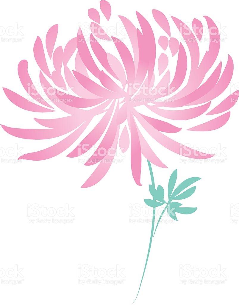 Free clipart chrysanthemum