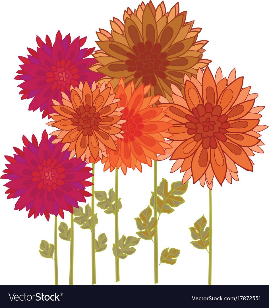 Orange flower download clip. Free clipart chrysanthemum