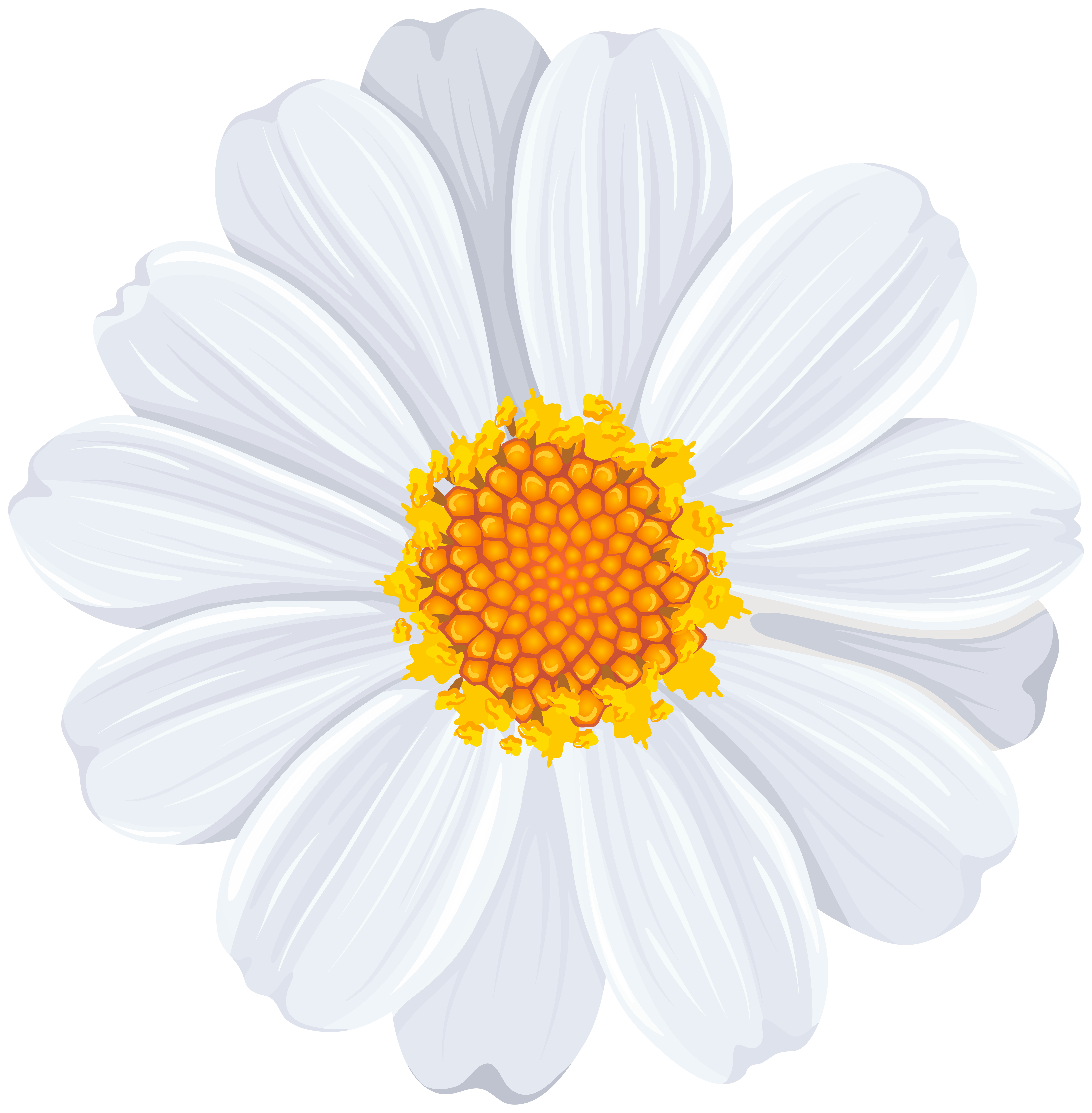 Free clipart daisy flower vector download White Daisy PNG Transparent Clip Art Image   Gallery Yopriceville ... vector download