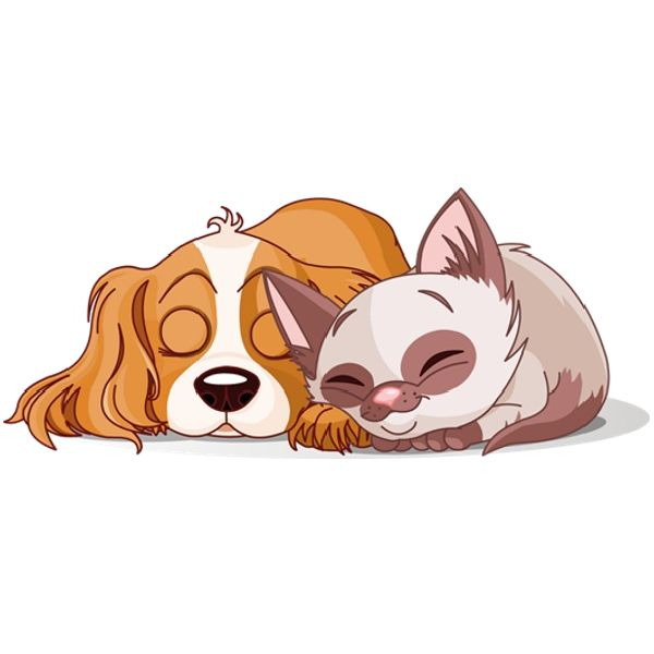 Look at clip art. Free clipart dog and cat together