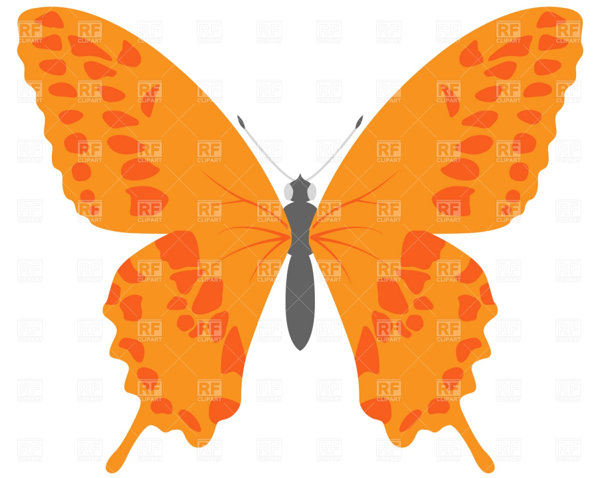 Free clipart download images clip art transparent download Butterfly Pictures Free | Free Download Clip Art | Free Clip Art ... clip art transparent download