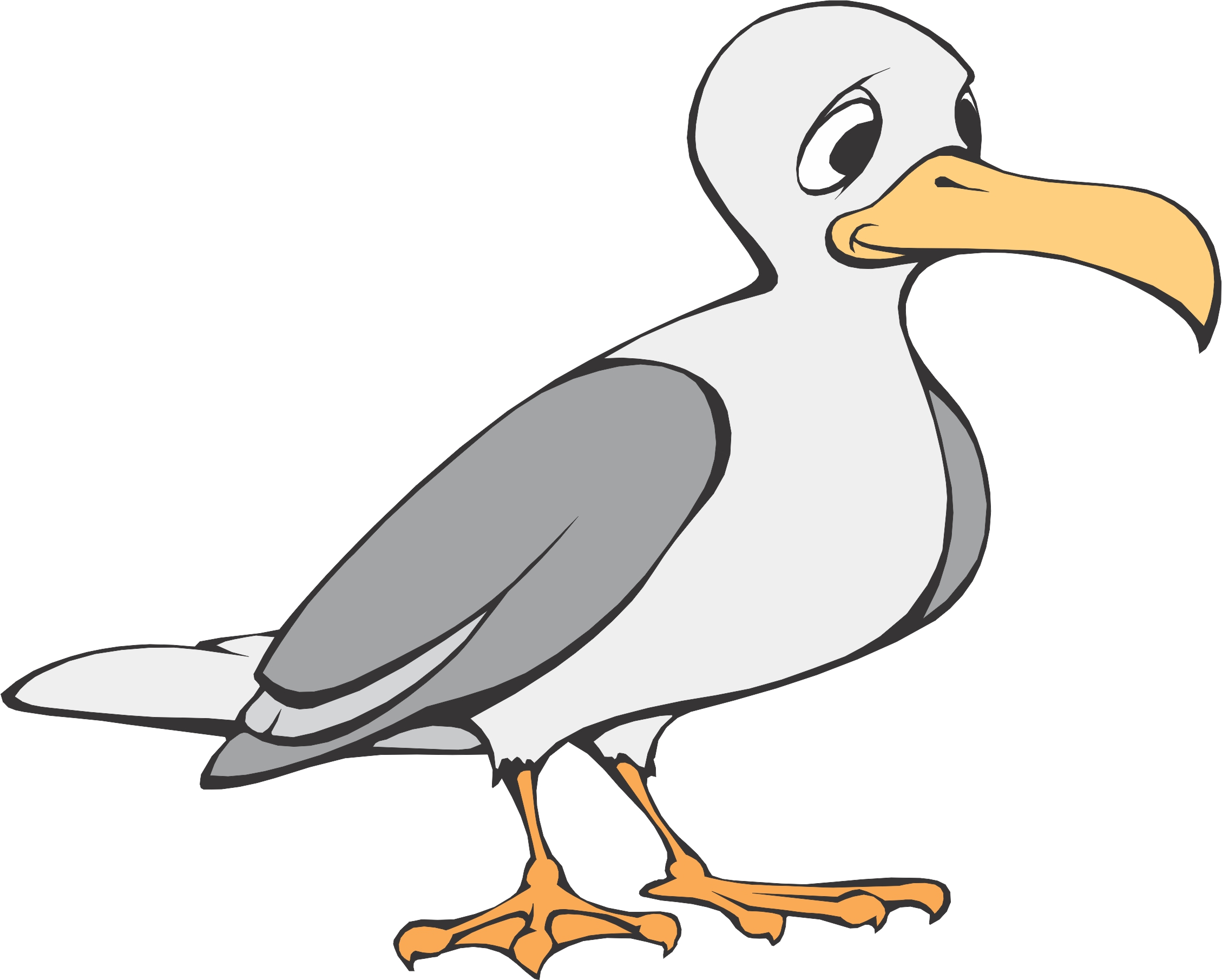 Free clipart downloads seagulls transparent library Free Seagull Cliparts, Download Free Clip Art, Free Clip Art on ... transparent library