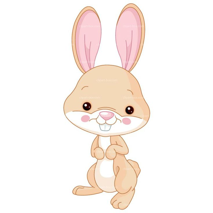 Free clipart drawings of rabbits in the forest. Bunny cliparts download clip