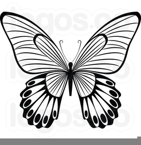 Free clipart flower and butterfly black and white. Flowers butterflies images at