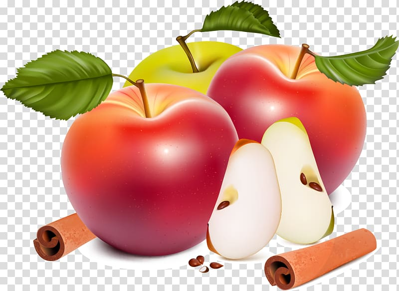 Free clipart for commercial use open half appl. Apple euclidean big transparent