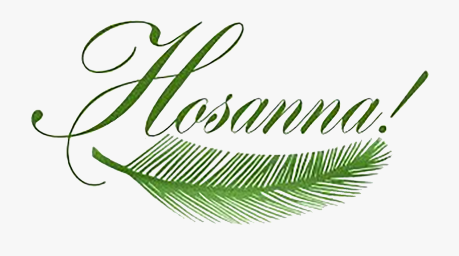 Free clipart for palm sunday vector royalty free library Pretty Design Clipart Palm Sunday By Sister Rose Ann - Palm Sunday ... vector royalty free library
