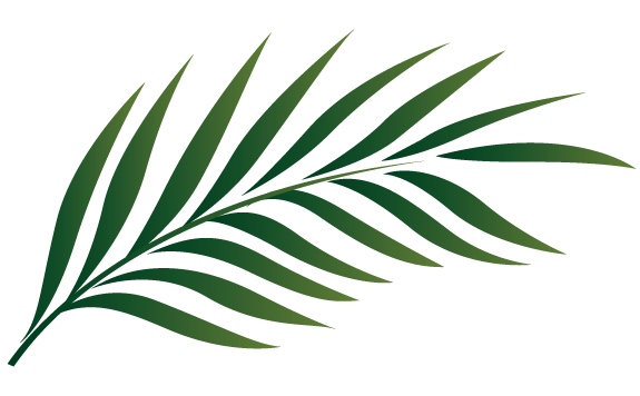 Free clipart for palm sunday clipart Free Clipart Palm Sunday | Free download best Free Clipart Palm ... clipart