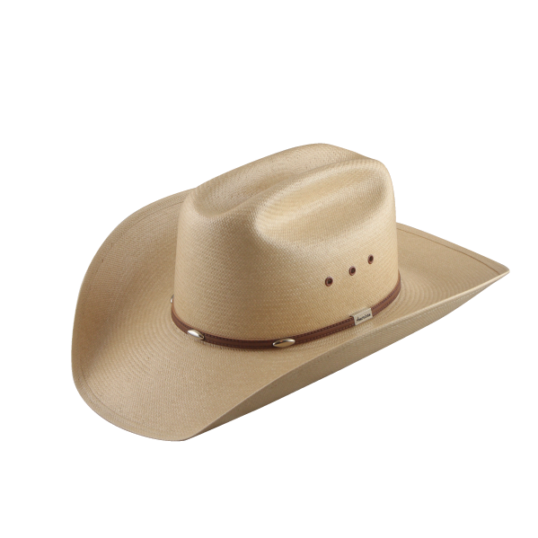 Free clipart for sun hats picture freeuse stock Cowboy Hat PNG Transparent Free Images | PNG Only picture freeuse stock