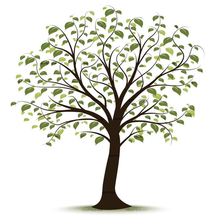 Free clipart google tree banner download 17 Best ideas about Tree Clipart on Pinterest | Clip art, Tree of ... banner download