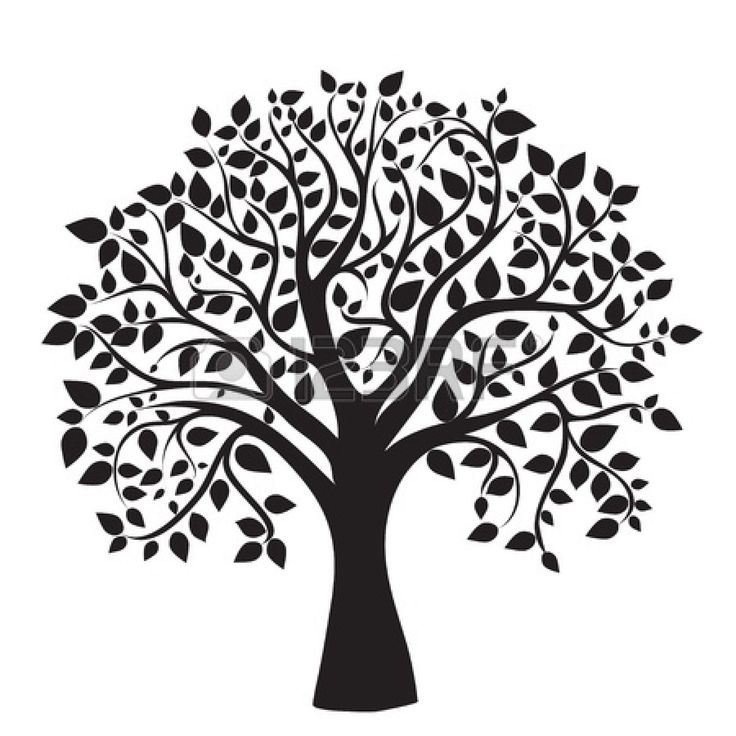 Free clipart google tree graphic transparent library 17 Best ideas about Tree Clipart on Pinterest | Clip art, Tree of ... graphic transparent library