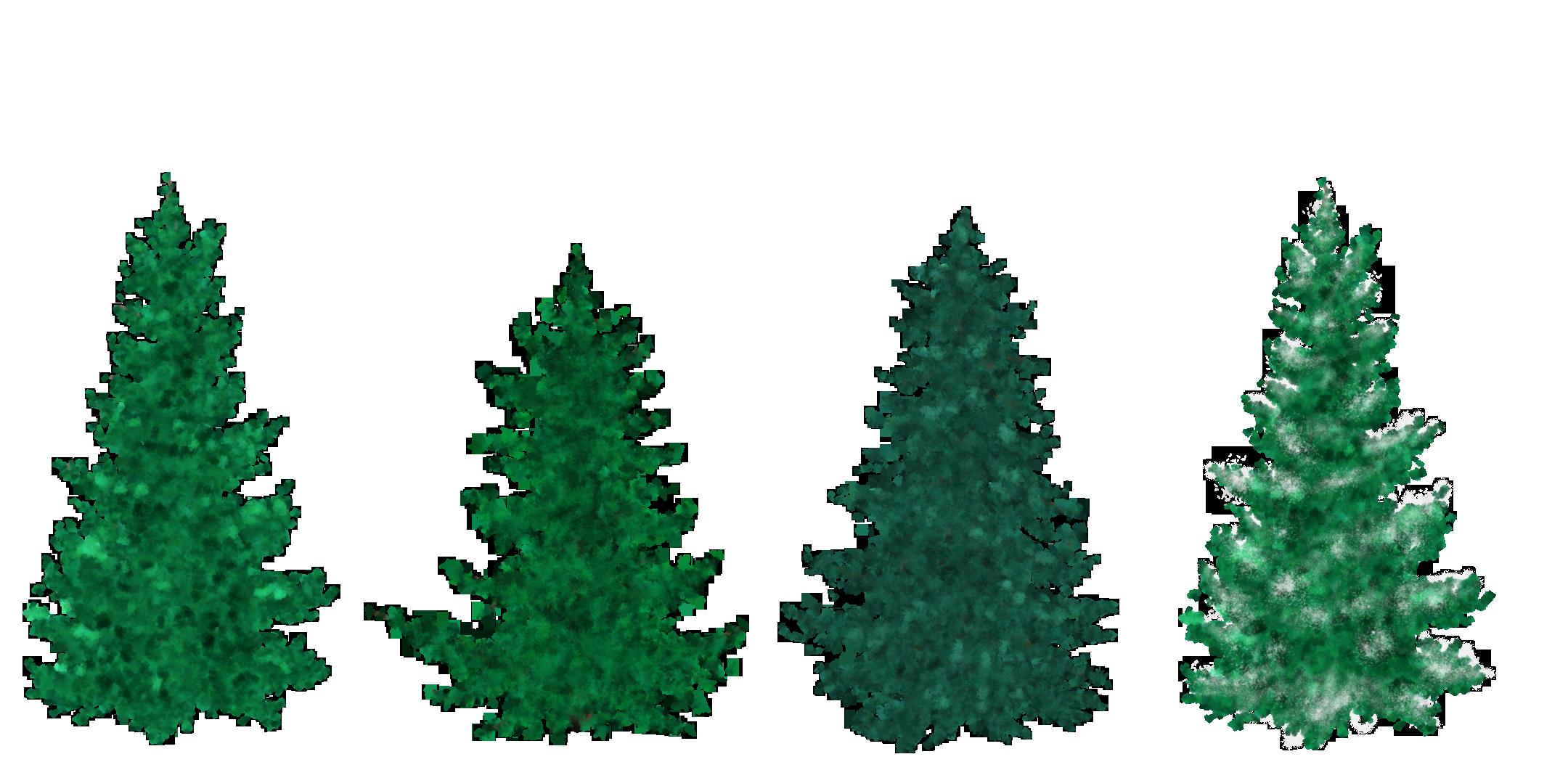 Free clipart google tree jpg free stock Free clipart google tree - ClipartFest jpg free stock