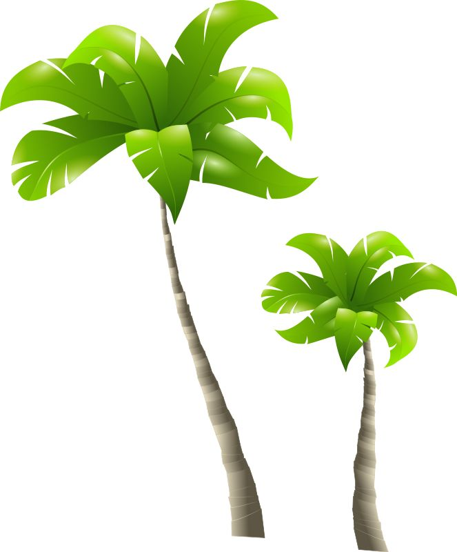 Free clipart google tree graphic free 17 Best ideas about Palm Tree Clip Art on Pinterest | Palm tree ... graphic free