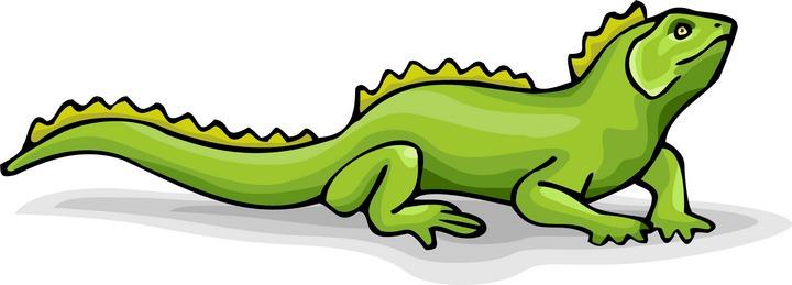 Cliparts download clip art. Free clipart iguana