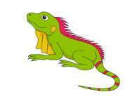 Free clipart iguana. Reptiles clip art pictures
