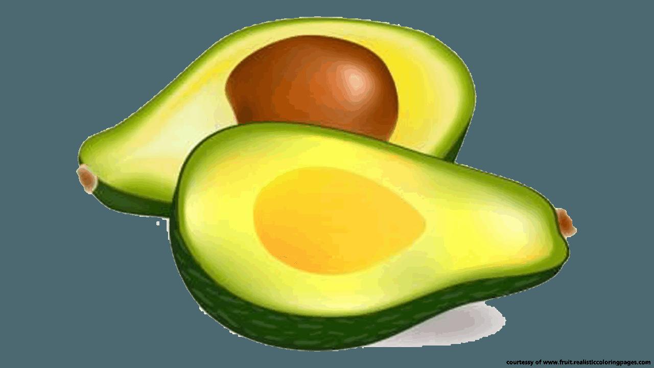 Free clipart images avacado download Avocado-PNG-transparent-images-free-download-clipart-pics-avocado ... download