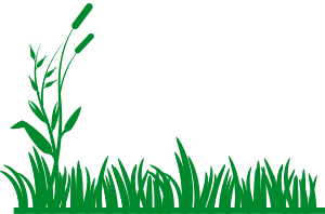 Free clipart images lawn care free Lawn Service Clip Art | Services - Tweedy\'s Lawn Care & More ... free