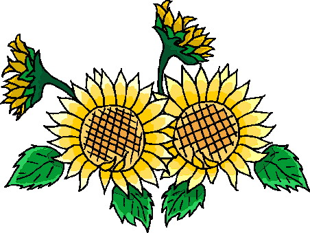Free clipart images sunflowers vector free download Free Sunflowers Cliparts, Download Free Clip Art, Free Clip Art on ... vector free download