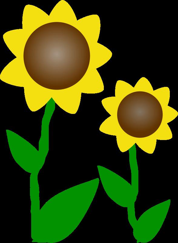 Free clipart images of sunflowers jpg Free Clipart: Sunflowers | Machovka jpg