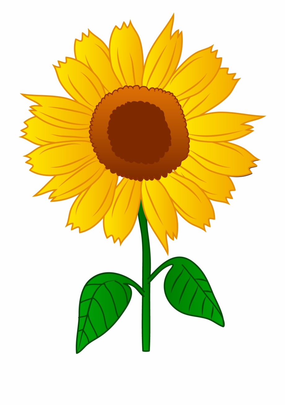 Free clipart images of sunflowers svg freeuse download Sunflower Clip Art Free Clipart - Sun Flower Clipart Free PNG Images ... svg freeuse download