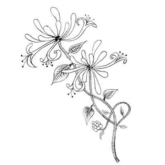 Free clipart images of wild honeysuckle bush banner transparent LAV109 Honeysuckle by Lavinia Stamps, Clear Polymer Stamp, Tracey ... banner transparent