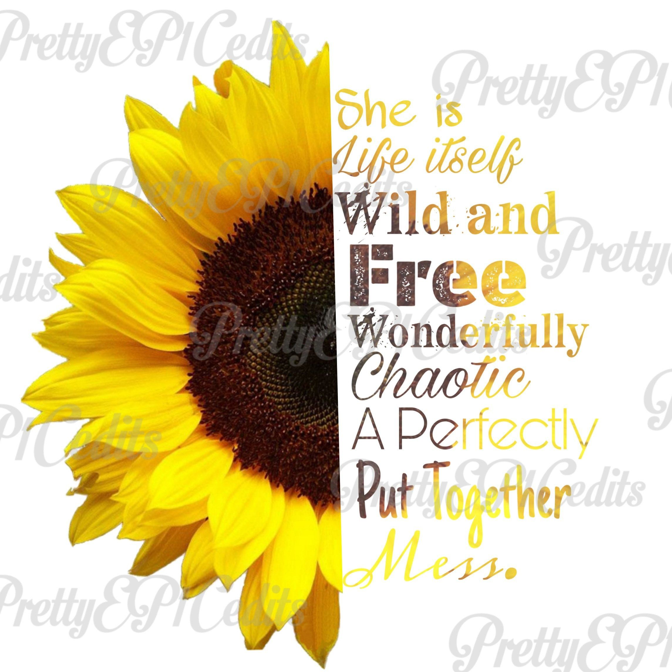 Sunflower quote half printable. Free clipart images quotes winners and losers
