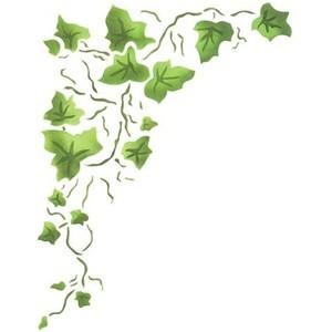 Free clipart ivy. Cliparts download clip art