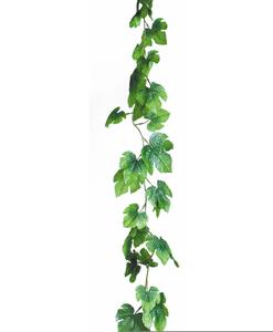 Free clipart ivy. Vine images at clker
