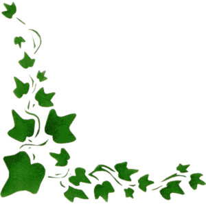Free clipart ivy transparent stock Free Ivy Cliparts, Download Free Clip Art, Free Clip Art on Clipart ... transparent stock