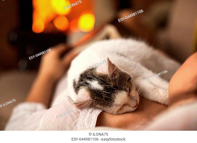 Free clipart kitten sleeping in front of fireplace svg library library Cats sleeping by a fireplace Stock Photos and Images | age fotostock svg library library