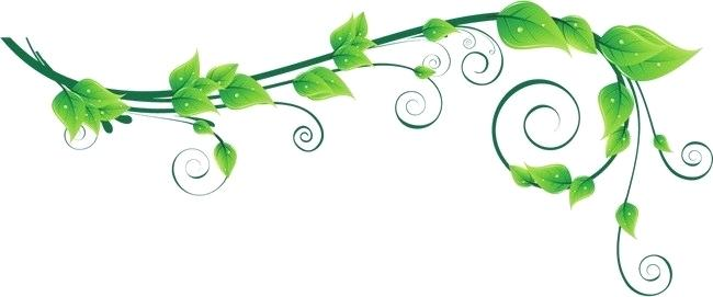 Free clipart leaves and vines png freeuse library clipart vines – primoresearch.co png freeuse library