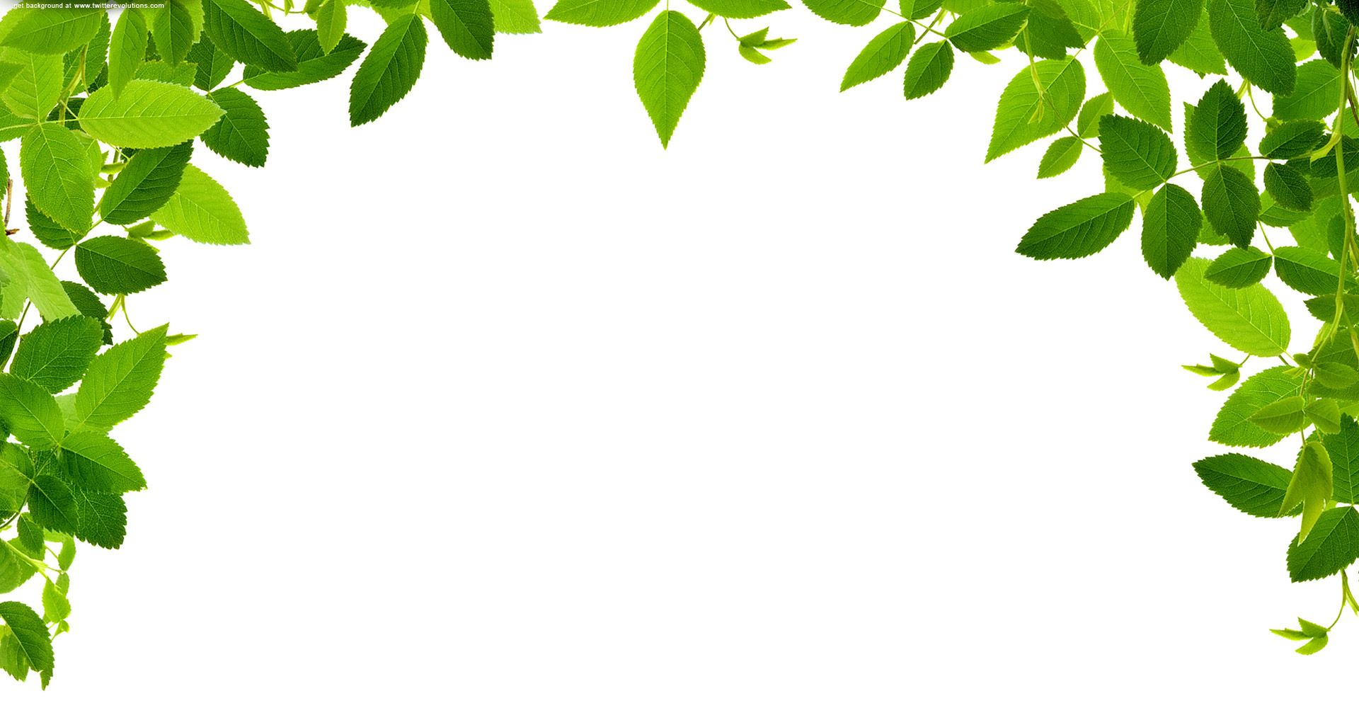 Free clipart leaves border. Real images at clker