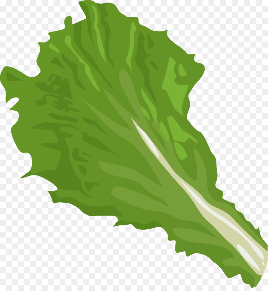 Free clipart lettuce. Green grass background png