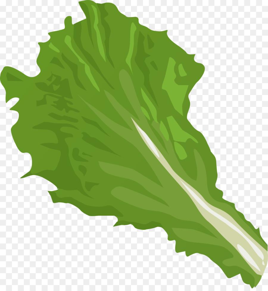 Free clipart lettuce svg transparent Green Grass Background png download - 2225*2400 - Free Transparent ... svg transparent