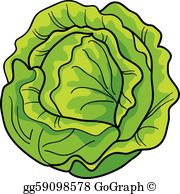 Free clipart lettuce vector library download Lettuce Clip Art - Royalty Free - GoGraph vector library download