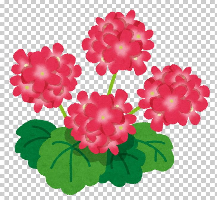 Free clipart may with geranium border. Sweet scented rose essential