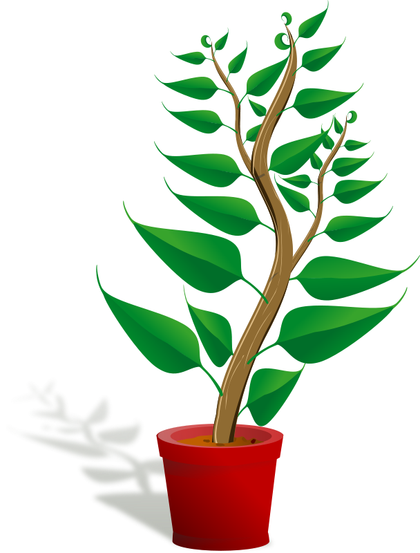 Free clipart money tree jpg freeuse Pot clipart green ~ Frames ~ Illustrations ~ HD images ~ Photo ... jpg freeuse