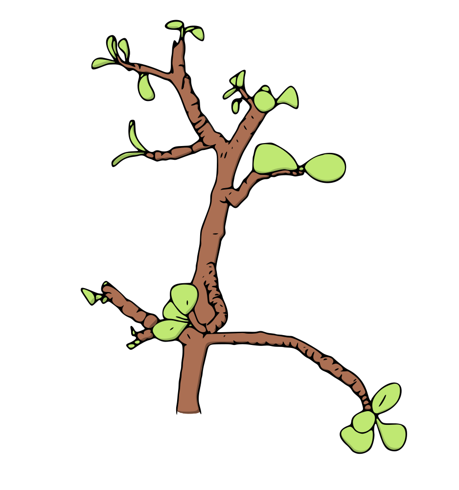 Tree growing clipart vector freeuse download Money Tree Clipart Group (69+) vector freeuse download