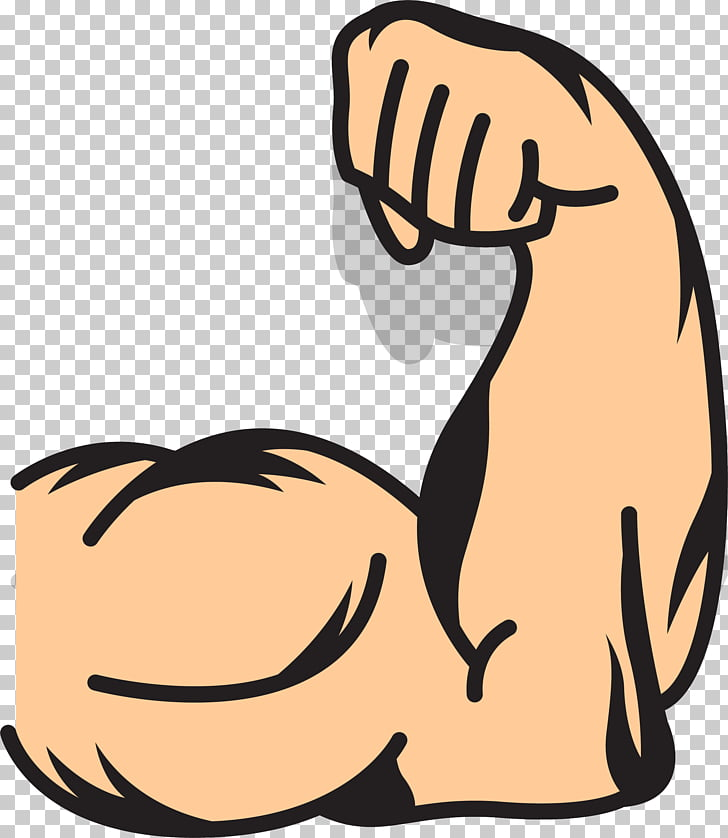 Muscle arms strong human. Free clipart muscles