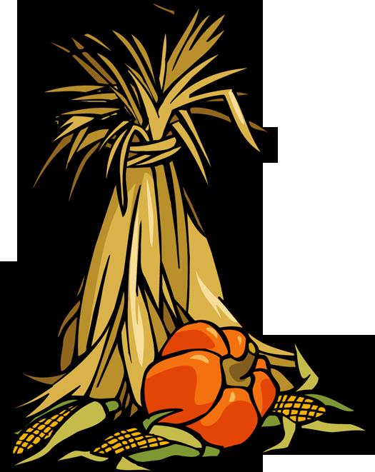 Stalk download clip art. Free clipart of corn stalks